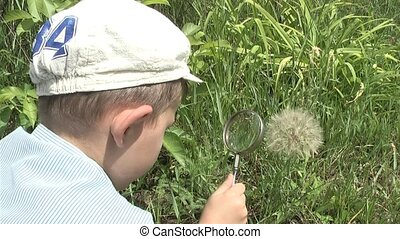 Magnifying Glass,