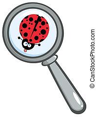 Magnifying Glass With Ladybug