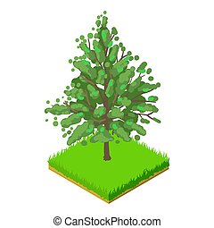 Magnolia acuminata icon. Isometric illustration of magnolia acuminata icon for web