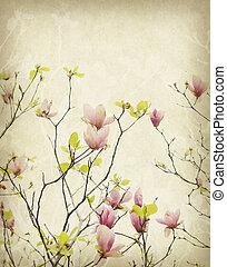 magnolia, bloem, met, oud, antieke , ouderwetse , papier, achtergrond