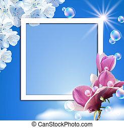 magnolia, cielo