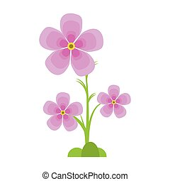 magnolia flower flora ornament