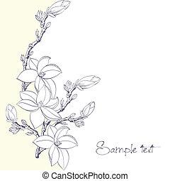 magnolia, fond, invitation, fleurs, ou, carte