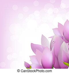 Magnolia With Bokeh, Vector Illustration