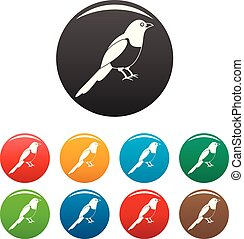 Magpie bird icons set color
