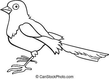 Magpie for coloring book - illustration of magpie bird for...