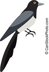 Magpie icon, flat style - Magpie icon. Flat illustration of...