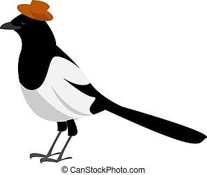 Magpie, illustration, vector on white background.