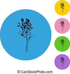magro, árvore