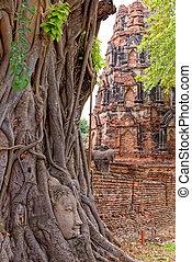 mahathat, tajlandia, wat, sukhothai, świątynia, buddysta, -