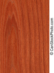 Mahogany (wood texture) - Texture of mahogany (high-detailed...