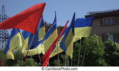 mai, 9, urss, drapeaux, rouges