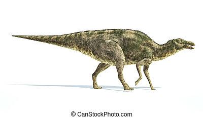 Maiasaura dinosaur, photorealistic representation. Side...