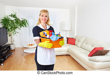 Maid woman with cleaning tools.