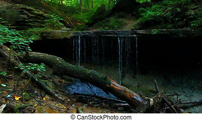 Maidenhair Falls Shades State Park - Maidenhair Falls is...