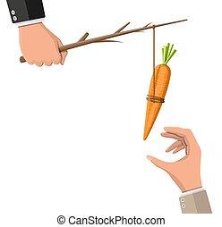main., bâton carotte