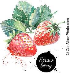 main, dessiné, tableau aquarelle, fraise, blanc, fond