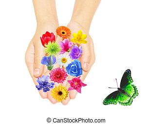 main, et, fleurs