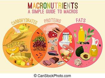Main Food Groupd - Main food groups - macronutrients. ...