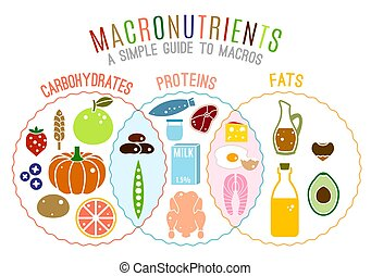 Main food groups - macronutrients. Carbohydrates, fats and ...