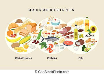 Main food groups - macronutrients. Carbohydrates, fats and proteins in comparison, foods icons in flat design isolated. Dieting, healthy eating concept. Macro Vector illustration, infographic elements.