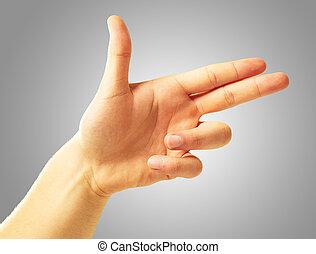 main humaine, deux, indiquer doigts