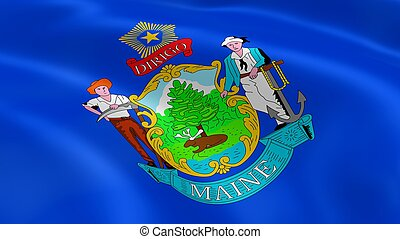 Mainer flag in the wind