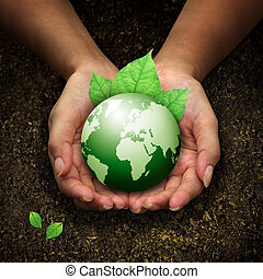 mains humaines, tenue, terre verte