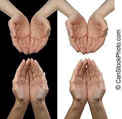 mains mises coupe, donations, chercher