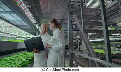 mains, moderne, vertical, ordinateur portable, hommes, deux, résultats, scientifiques, biologique, recherche, discuter, farm., femmes