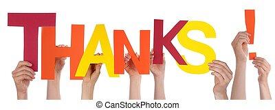 mains, remerciement, coloré, tenue