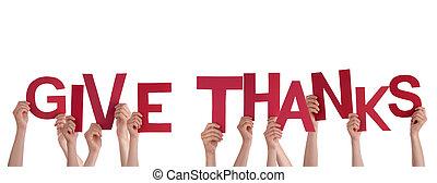 mains, remerciement, tenue, donner