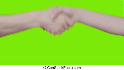 mains, vert, sur, écran, teen mâle, poignée main, adulte féminin