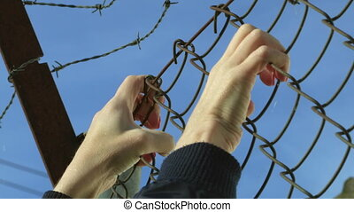 mains, wire., barrière, barbelé, refugees, concept, réfugié