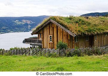 maison, à, a, herbe, sur, a, toit, à, ciel obscurci