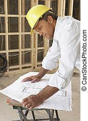 maison, étudier, architecte, plans, nouveau