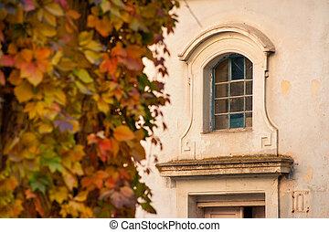 maison, automne, sauvage, façade, nids, vin