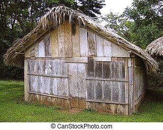 maison bois, jungle, chiapas, mexique