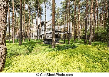 maison, caché, forêt, élégant