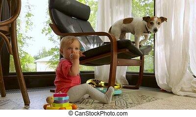 maison, chaise, enfant, chien, séance