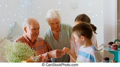 maison, chocolat, confortable, petit-fils, grand-père, donner, caucasien, 4k