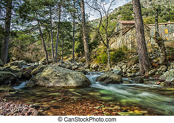 Maison Forestiere by Tartagine river in northern Corsica - ...