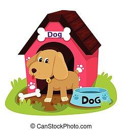 maison, illustrateur, chien