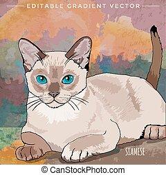 maison, illustration, chat