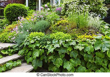 maison, luxuriant, jardin