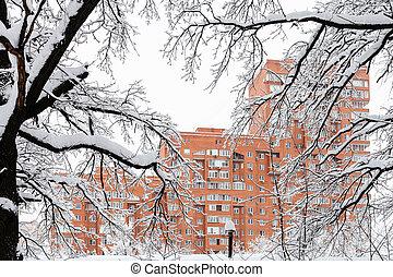 maison, neige-couvert, branches, par, vue