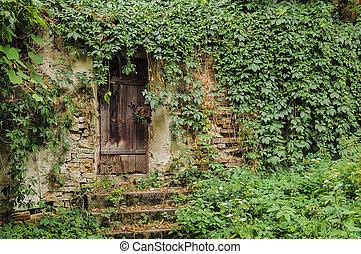 maison, porte, envahi, mur, lierre, complètement