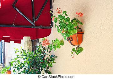 maison, pot, fleurs, murs, parer