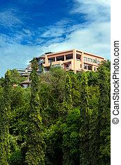 maison, rainforest