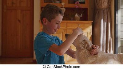 maison, sien, garçon, 4k, chien